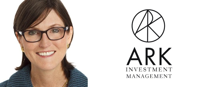 Founder and Director of Investment ARK Cathie Wood